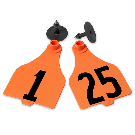 Destron Fearing™ Extended Large Numbered Tags (with Studs) - Orange, Numbers 1-25