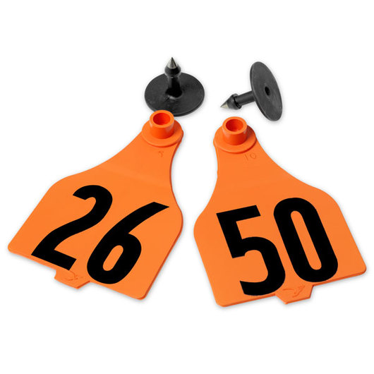 Destron Fearing™ Extended Large Numbered Tags (with Studs) - Orange, Numbers 26-50