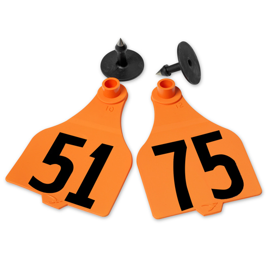 Destron Fearing™ Extended Large Numbered Tags (with Studs) - Orange, Numbers 51-75