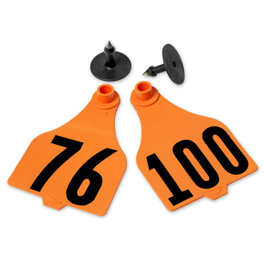 Destron Fearing™ Extended Large Numbered Tags (with Studs) - Orange, Numbers 76-100