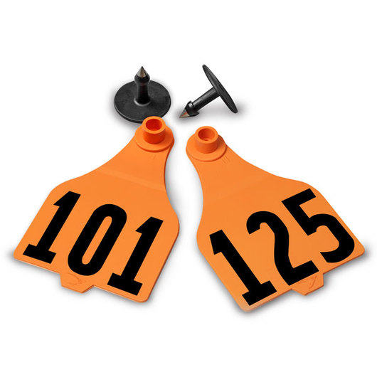 Destron Fearing™ Extended Large Numbered Tags (with Studs) - Orange, Numbers 101-125