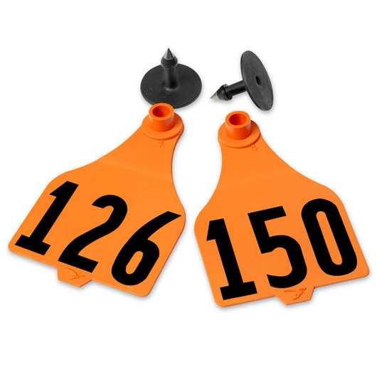 Destron Fearing™ Extended Large Numbered Tags (with Studs) - Orange, Numbers 126-150