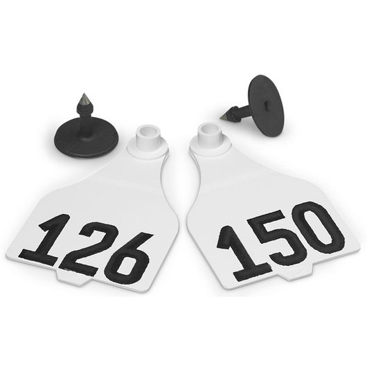 Destron Fearing™ Extended Large Numbered Tags (with Studs) - White, Numbers 126-150