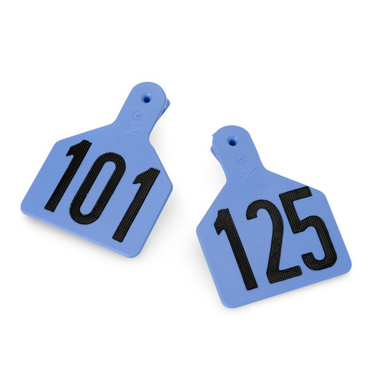 Z1 No-Snag-Tags® One-Piece Numbered Ear Tags, Calf Size 2-3/8 in. x 3-1/8 in. - Blue, Numbers 101-125