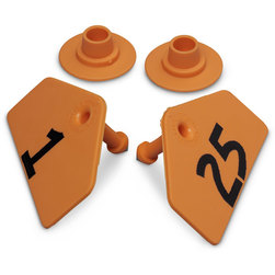 Allflex® Global Hog Male Numbered Tags - Orange, Numbers 1-25
