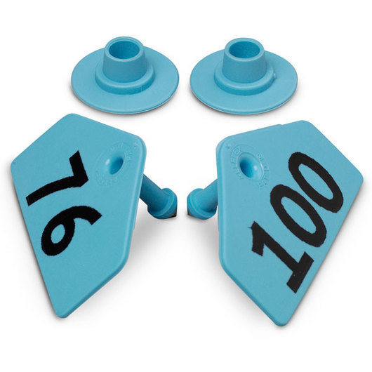 Allflex® Global Hog Male Numbered Tags - Blue, Numbers 76-100