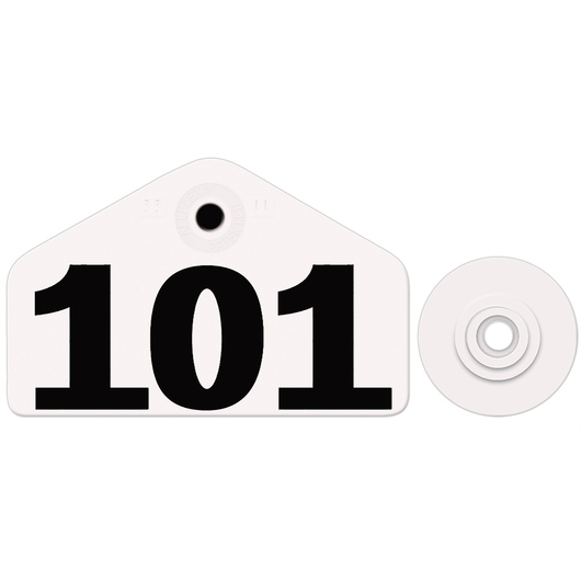 Allflex® Global Hog Male Numbered Tags - White, Numbers 101-1,000