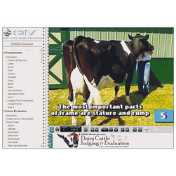 Dairy Cattle Judging & Evaluation DVD