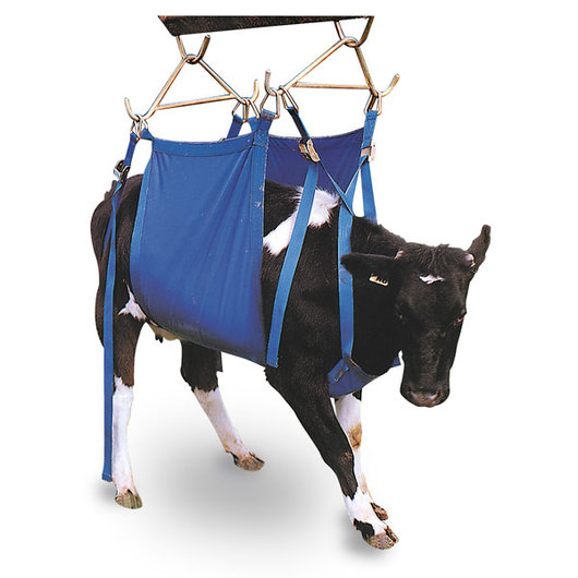 X-Large Daisy-Lifter Cow Lift - Fits Large-Size Dairy Breeds/Large-Size Beef Cattle