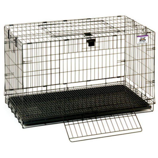 31 L x 17 W x 20 H Wire Pop-Up Rabbit Cage