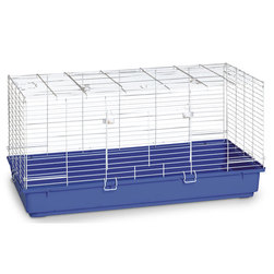 Cage with Blue Plastic Bottom
