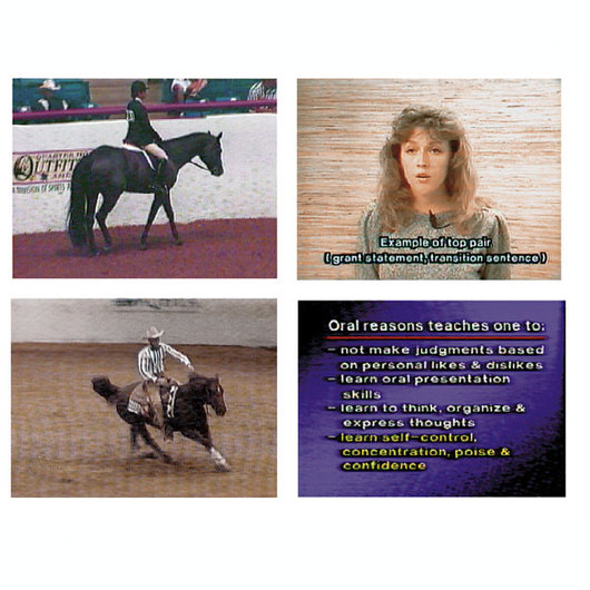 Oral Reasons for Horse Judging - DVD