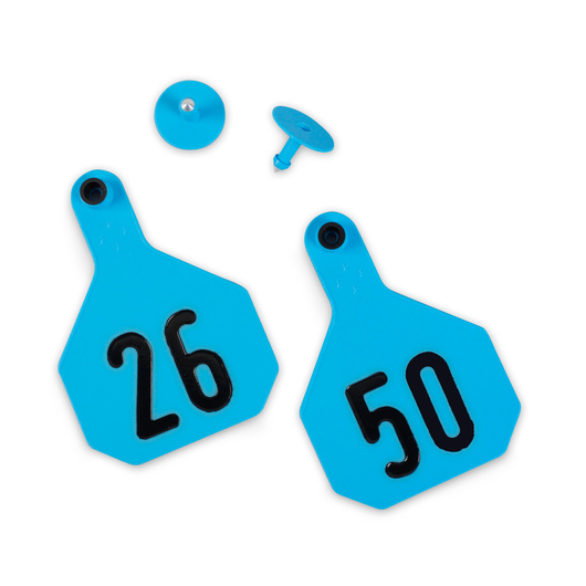 Y-TEX® Large 3-1/4 in. x 4-3/4 in. 4-Star Ear Tags (with Studs) - Blue, Numbered 26-50