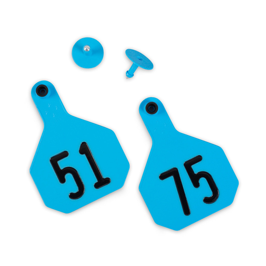 Y-TEX® Large 3-1/4 in. x 4-3/4 in. 4-Star Ear Tags (with Studs) - Blue, Numbered 51-75