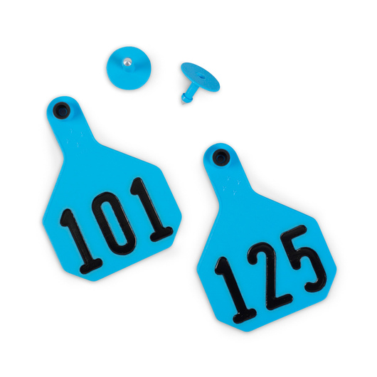Y-TEX® Large 3-1/4 in. x 4-3/4 in. 4-Star Ear Tags (with Studs) - Blue, 101-125
