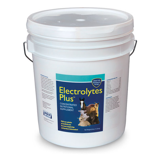 Electrolytes Plus™ Multi Species Supplement, 25-lb. Plastic Pail