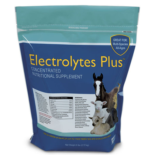 Electrolytes Plus™ Multi-Species Supplement, 6-lb. Reclosable Bag