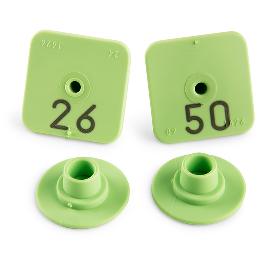Allflex® Numbered Piglet Male Tags - 26-50, Green