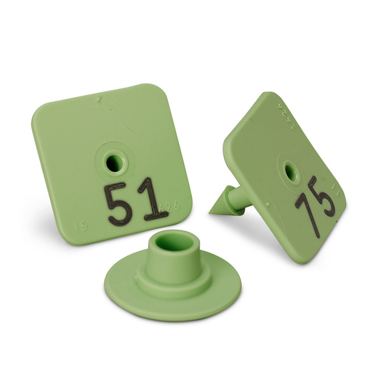 Allflex® Numbered Piglet Male Tags - 51-75, Green