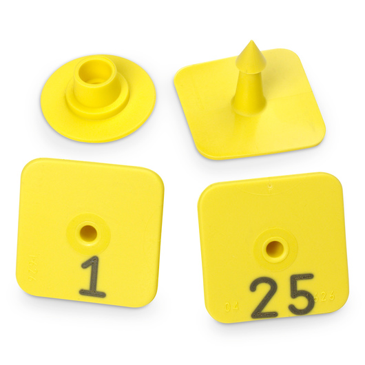 Allflex® Numbered Piglet Male Tags - 1-25, Yellow