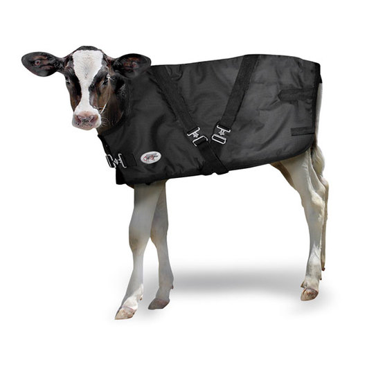 Extra-Large Calf Warming Blanket - 28