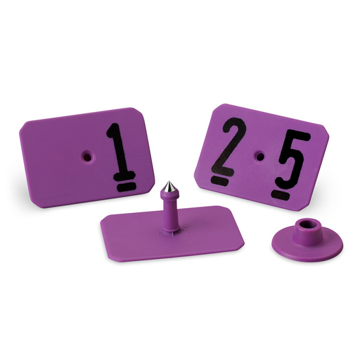 Y-TEX® SwineStar® MAX 2-1/8 x 1-1/2 Ear Tags (with Studs) - Purple, Numbered 1-25