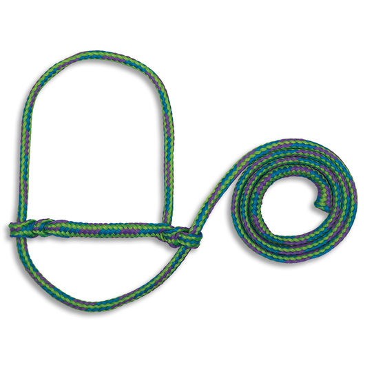 Weaver® Poly Rope Sheep and Goat Halters - Green/Blue/Purple