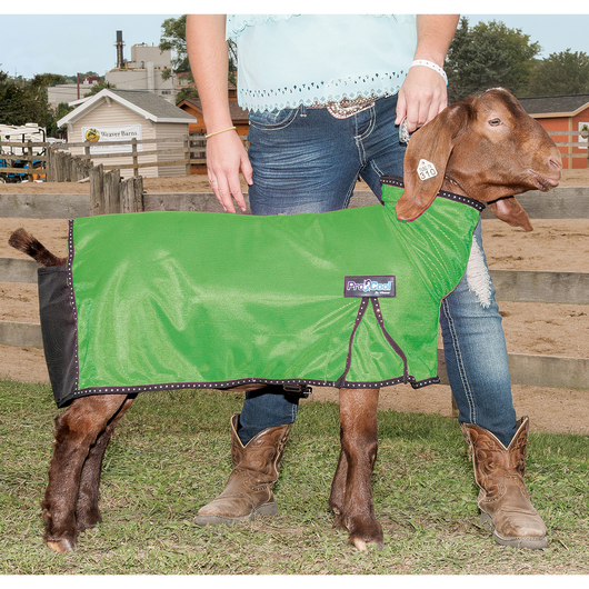 Weaver® ProCool™ Colored Mesh Goat Blanket w/Reflective Piping - Lime Zest, Large