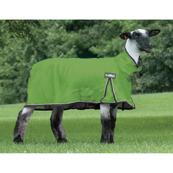 Weaver® ProCool™ Mesh Sheep Blanket - Large (130-170 lbs.), Lime Zest