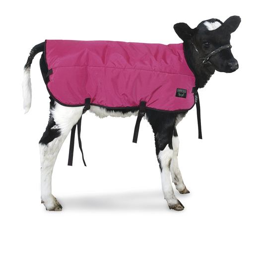 Double-Insulated Calf Blanket - Pink, Medium Size