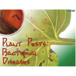 Plant Pests - Weeds, PowerPoint