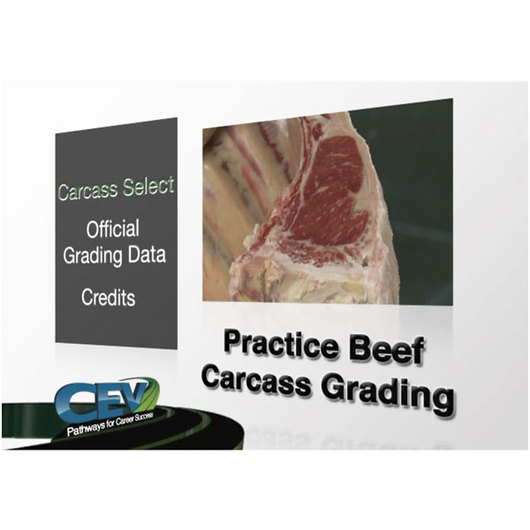 Practice Beef Carcass Grading DVD