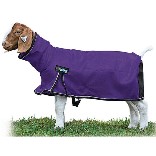 Weaver® ProCool™ Mesh Goat Blankets with Reflective Piping - Purple, Large