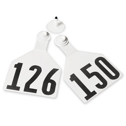 Z2 No-Tear-Tags™ Two-Piece Ear Tags, Maxi Size, 4-1/2 in. x 3 in. - White, Numbers 126-150