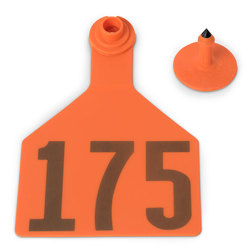 Z2 No-Tear-Tags™ Two-Piece Ear Tags, Maxi Size, 4-1/2 in. x 3 in. - Orange, Numbers 151-175