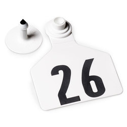 Z2 No-Tear-Tags™ Two-Piece Ear Tags, Large Size - 2-1/2 in. x 3-1/4 in. - White - Numbers 26-50