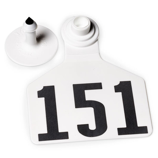 Z2 No-Tear-Tags™ Two-Piece Ear Tags, Large Size - 2-1/2 in. x 3-1/4 in. - White - Numbers 151-175