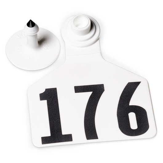 Z2 No-Tear-Tags™ Two-Piece Ear Tags, Large Size - 2-1/2 in. x 3-1/4 in. - White - Numbers 176-200