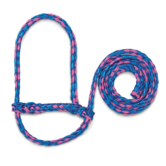 Weaver® Poly Rope Sheep and Goat Halters - Hurricane Blue/Royal Blue/Rose