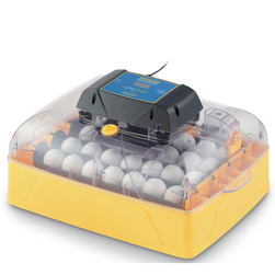 Brinsea Ovation Advance Egg Hen Incubator