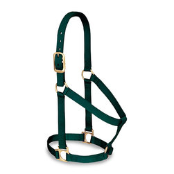 Weaver® Basic Halter - Medium - Green