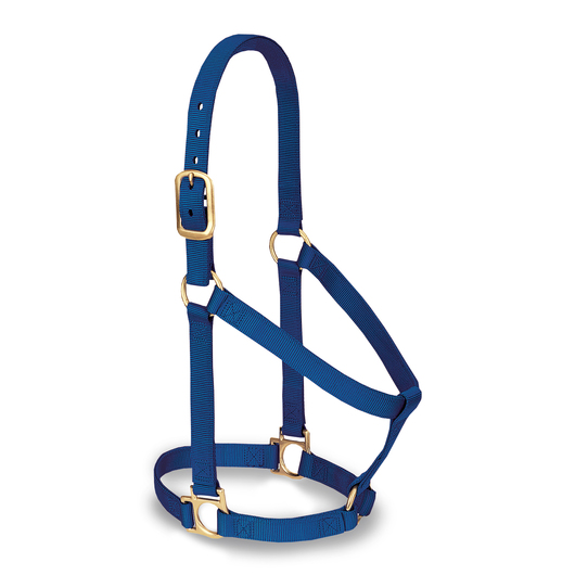 Weaver® Basic Halter - Small - Blue