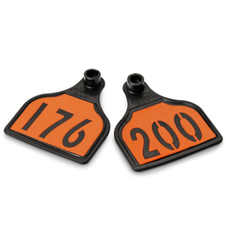 CAL TAG Calf Tag - Numbers on 1 Side - 3 in. L x 2-1/4 in. W - Pkg. of 25 - Numbers 176-200 - Orange Over Black Base
