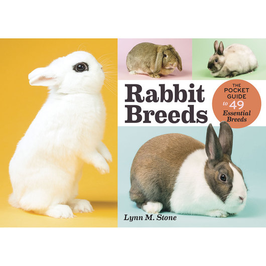 Rabbit Breeds - The Pocket Guide to 49 Essential Breeds