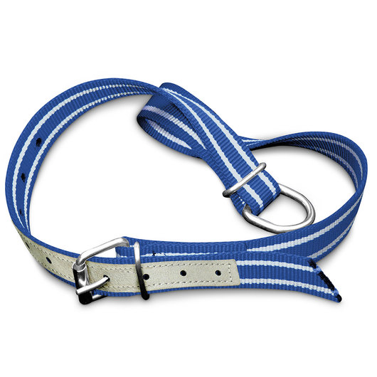Nylon Collar with Leather Reinforcement - 39 in. L