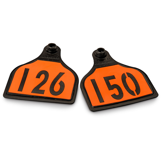 CAL TAG EZCee Animal Identification Tags - Cow Size - 4 in. L x 3-1/4 in. W - Numbers on 1 Side - Numbers 126-150 - Package of 25 - Orange Tag over Black Base