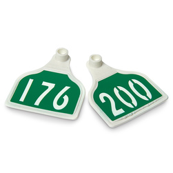 CAL TAG EZCee Green Tag over White Base Calf Tags with Numbers on 1 Side