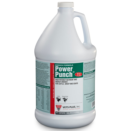 Power Punch™ Drench - 1-Gallon Jug