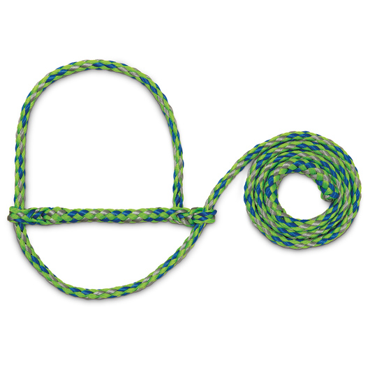 Weaver® Poly Rope Sheep and Goat Halters - Green/Blue/Gray