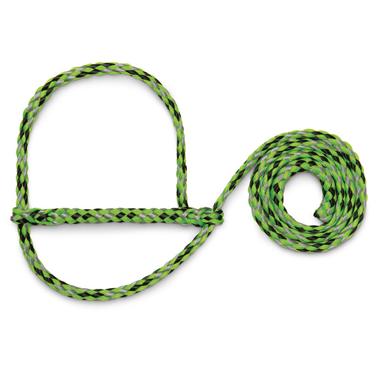 Weaver® Poly Rope Sheep and Goat Halters - Lime/Black/Gray